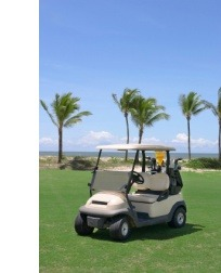 Seguro Carrito de Golf